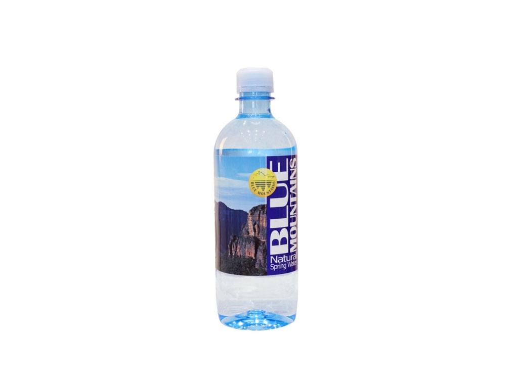 blue mountain water bottle 600ml
